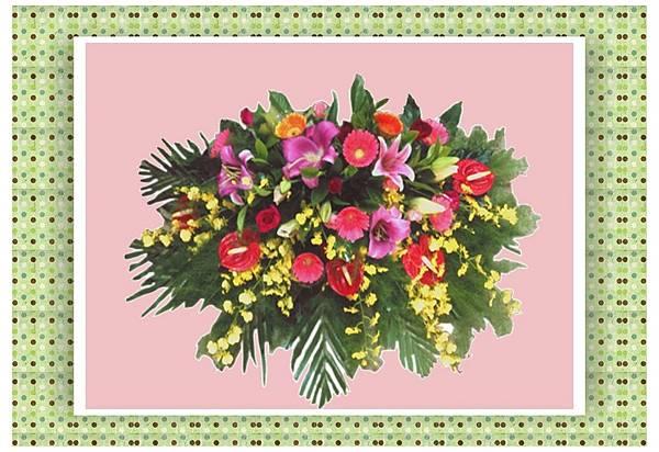 盆花24.jpg