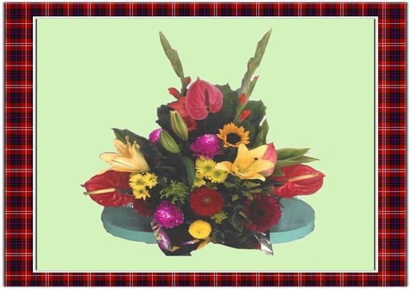 盆花23.jpg