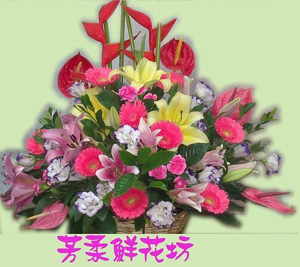 盆花14.jpg