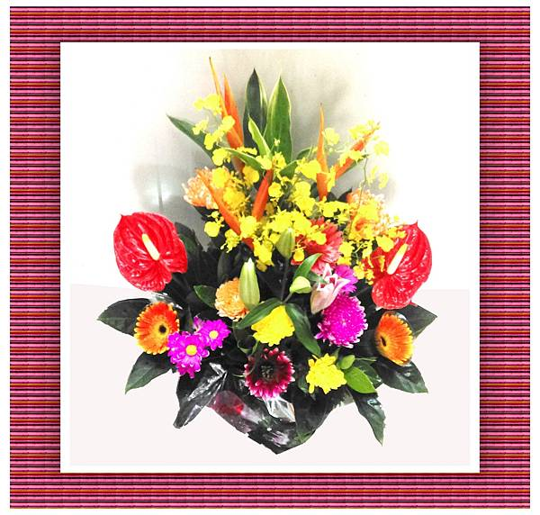 盆花20.jpg