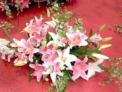 盆花38.jpg