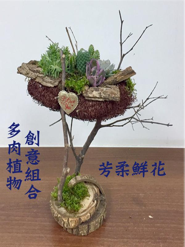 多肉植物創意組合-1.jpg