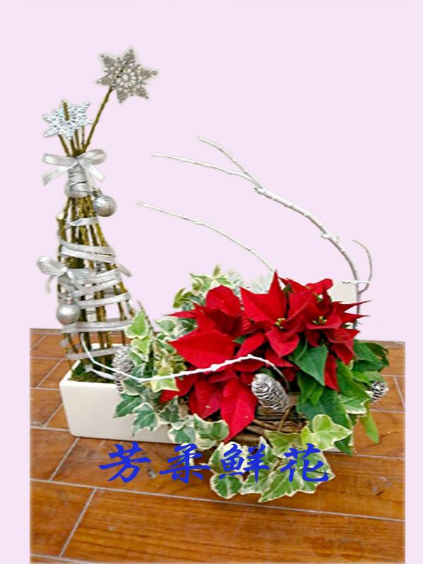 聖誕紅組合17-1.jpg