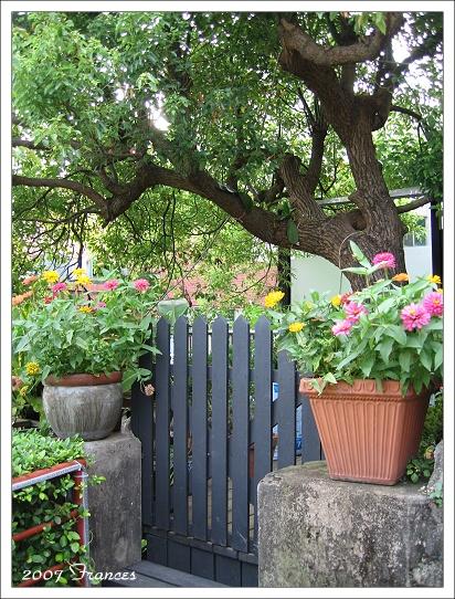 美麗的小門