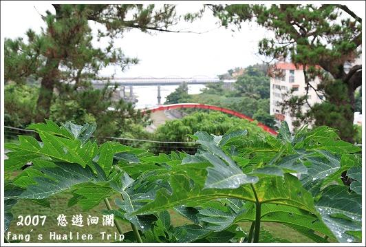 遠眺花蓮港6