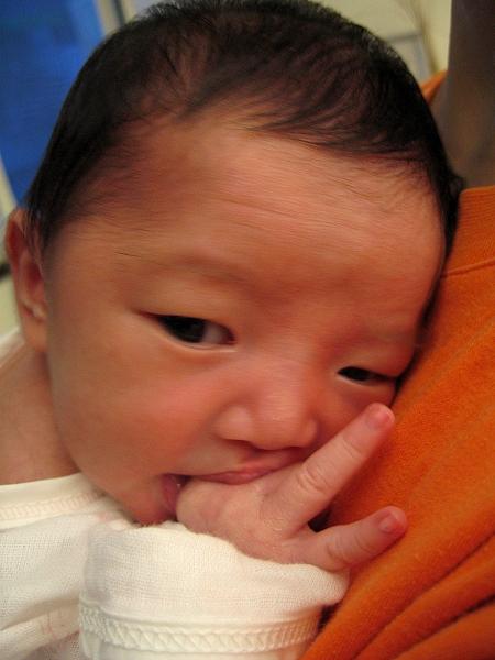 小Joli很愛吃手指