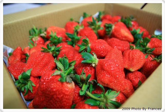 裡面的草莓更大顆.....