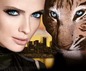Maybelline-Jade-Cat-Eyes-Topmodel.jpg
