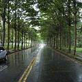 雨天的校園
