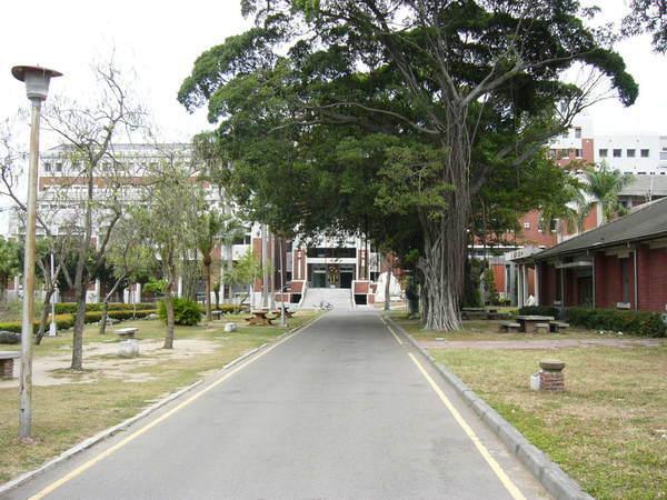 中文系館旁的小徑