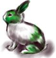 兔崽子4.jpg