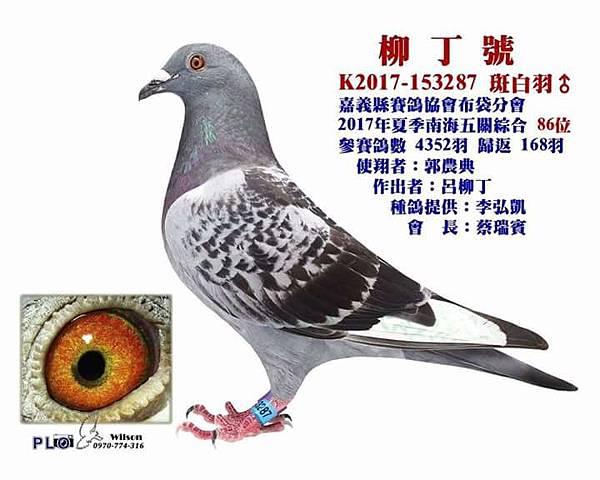 FB_IMG_1499592170366.jpg