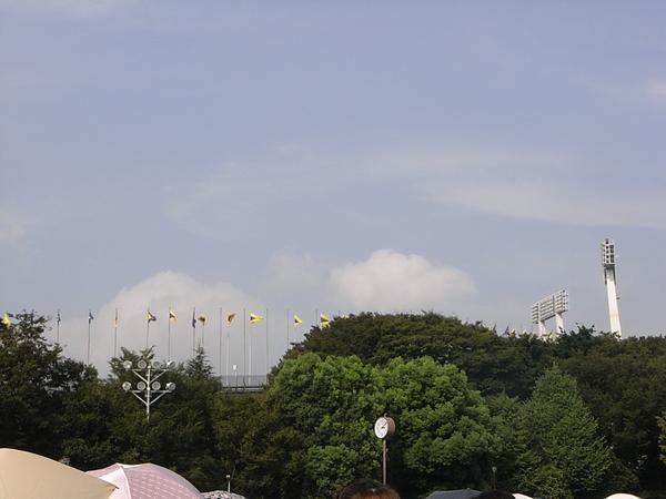 AAA2008 (5).JPG