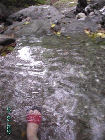 到樹湖瀑布清涼一下