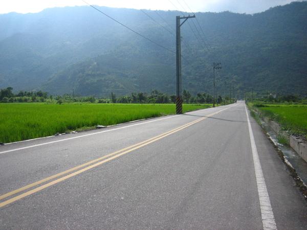 豐田牛犛社區附近的景色