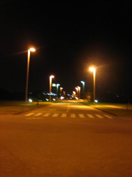 東華仰山橋