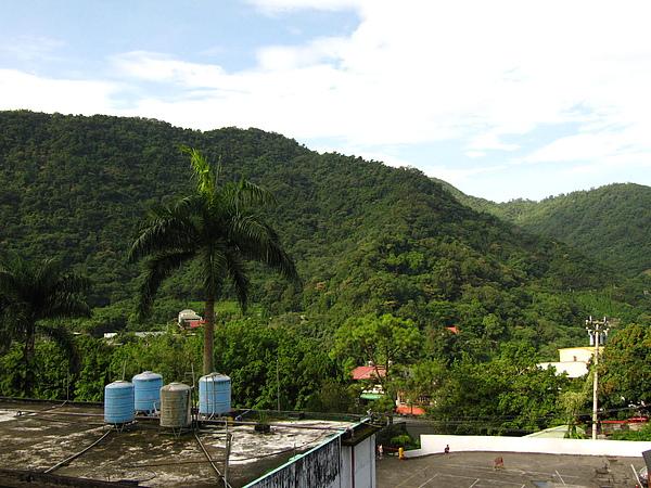 早上起來民宿外面的景色