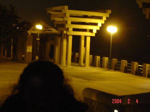 2004-2-4高雄燈愷 050