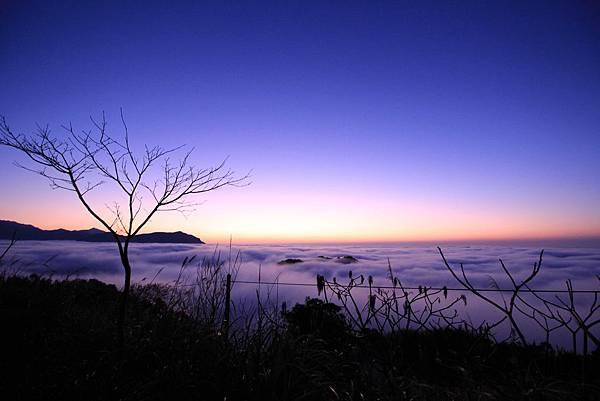 02-溫家茶園的傍晚雲海