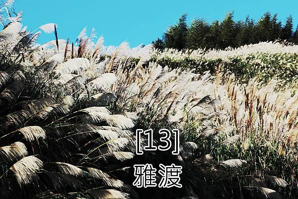13.雅渡