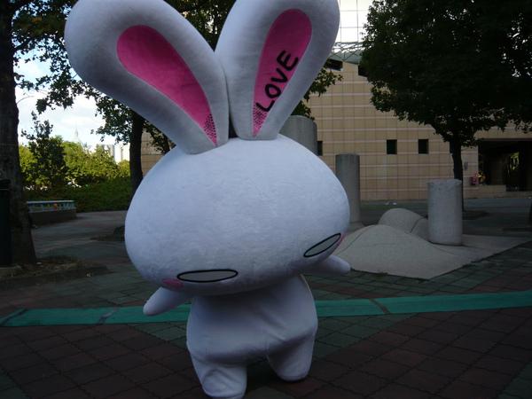 Love兔兔來站台喔~