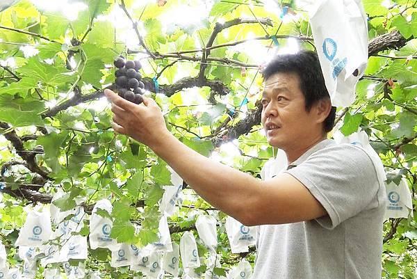 苗栗卓蘭詹超智-農友4.jpg