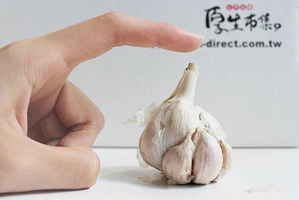 分辨台灣進口蒜頭-泰平蒜頭的形狀.jpg