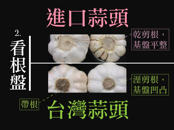 分辨台灣進口蒜頭2-01.png