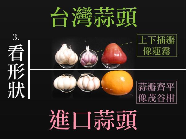 分辨台灣進口蒜頭3-01.png