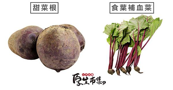 blog甜菜根配圖05-甜菜根與食葉補血菜-01.jpg