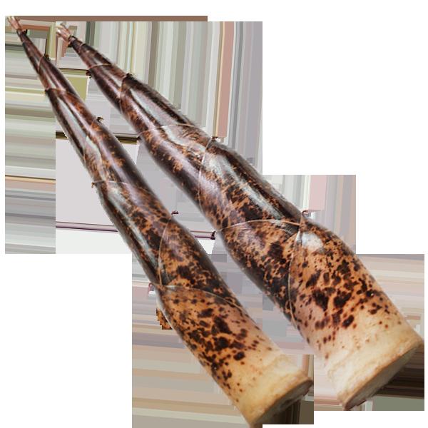 桂竹筍帶殼