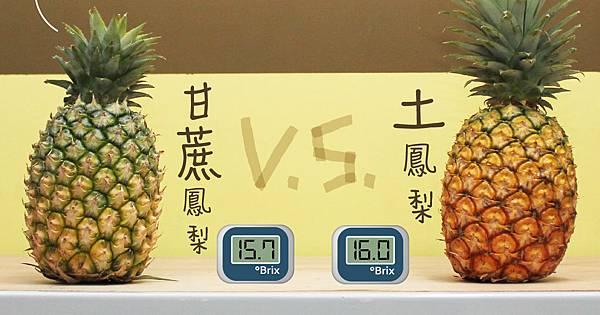 圖卡-甘蔗鳳梨 土鳳梨-01.jpg