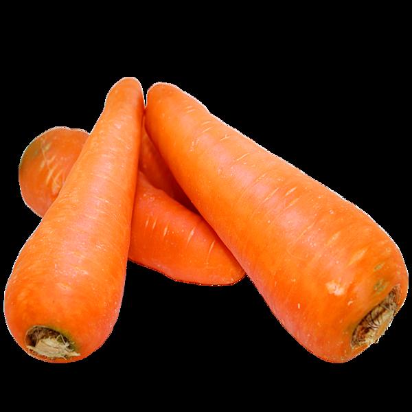 item-V6020胡蘿蔔.png