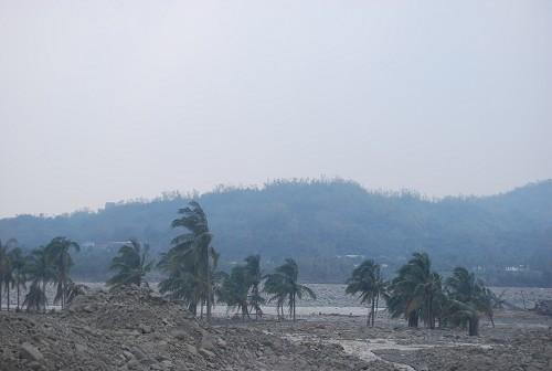 檳榔樹都被淹到一半了