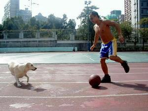 貝克漢足球金狗