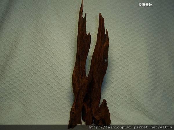 芽莊白奇楠沉香 (9)
