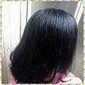 BioFIVE馬鞭草洗髮精-使用後