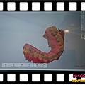 DSCPDC_0003_BURST20180901121015391_COVER.jpg