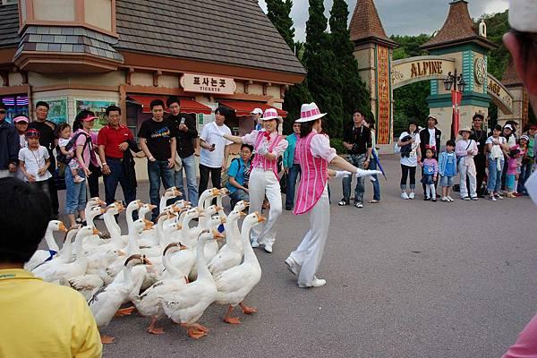 愛寶樂園 - 動物遊行