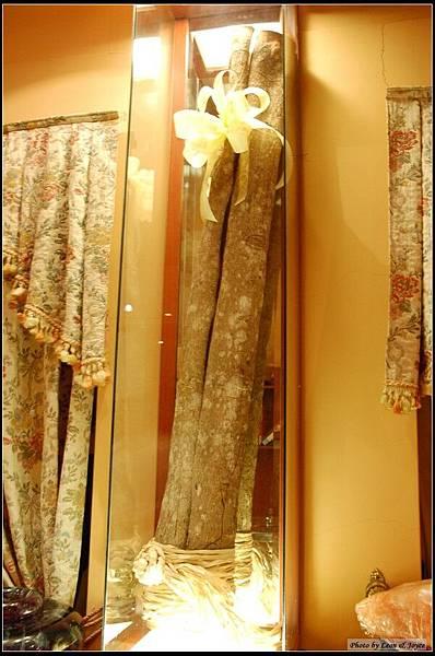 """好奇問牆上那根""""樹幹""""是什麼,原來是超大根的安南肉桂"""