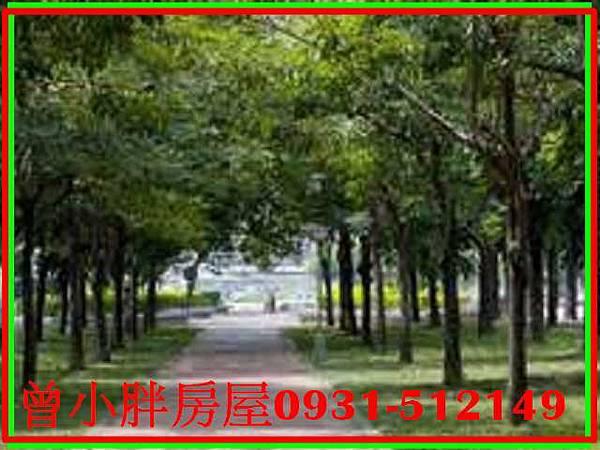PhotoCap_522 (2).jpg