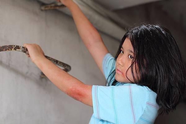 飾演陳文彬女兒的小童星蔡得倫戲中飽受驚嚇