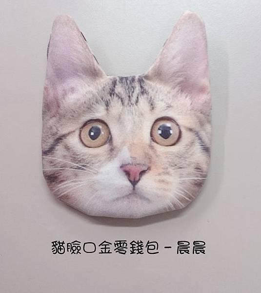 貓臉口金零錢包DSC_7075.jpg