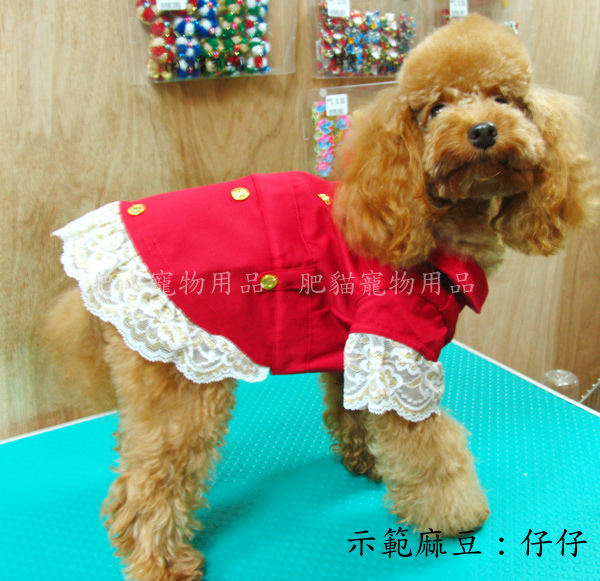 紅色蕾絲風衣5.jpg