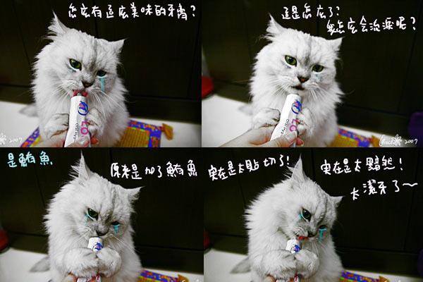 牙膏1.jpg