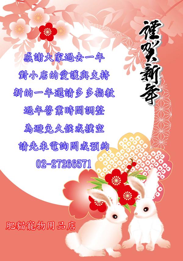 2011年農曆年
