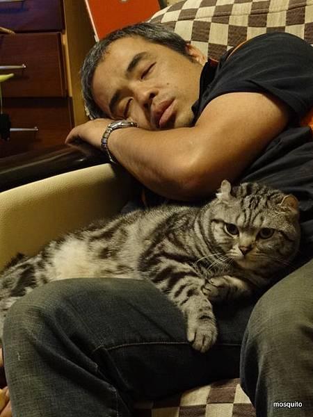 爸,你放心睡我保護你