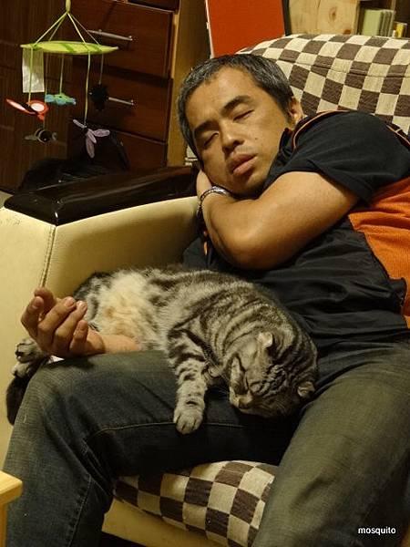 爸,你放心睡結果自己先睡