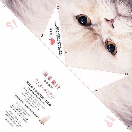 貓展021