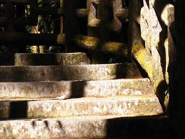 石階也讓大自然征服,青苔鋪延